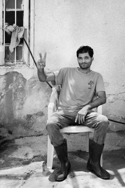 palestinians (23)