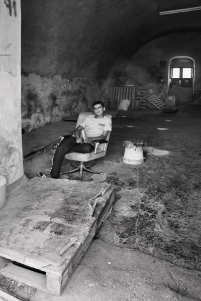 palestinians (28)